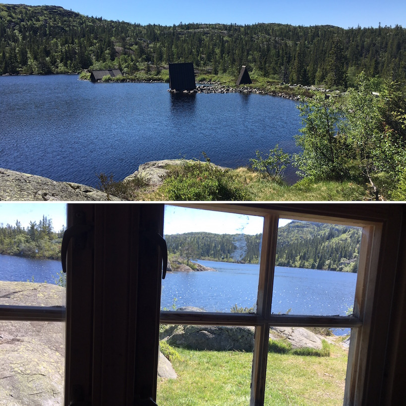 Widok z domku