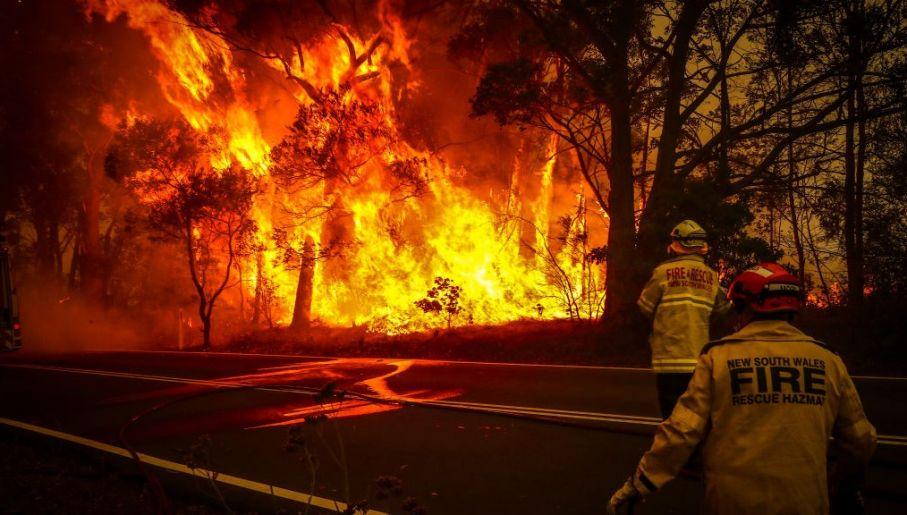 Pożary w Australii – jak sytuacja ma się na prawdę?