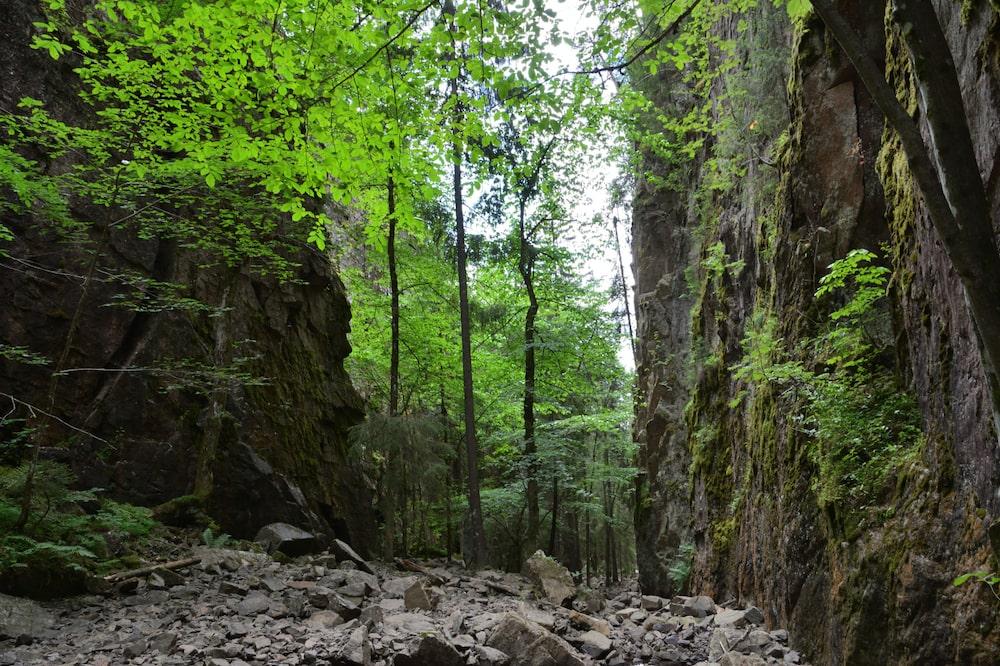 Droga w kanionie - Drammen
